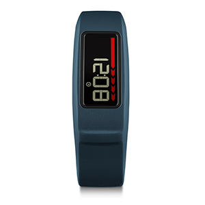 Garmin Vivofit 2 Fitness Tracker on inKin Blog